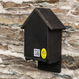Cavity Bat Box with improved thermal performance