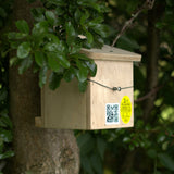 Dormouse box in shrubs