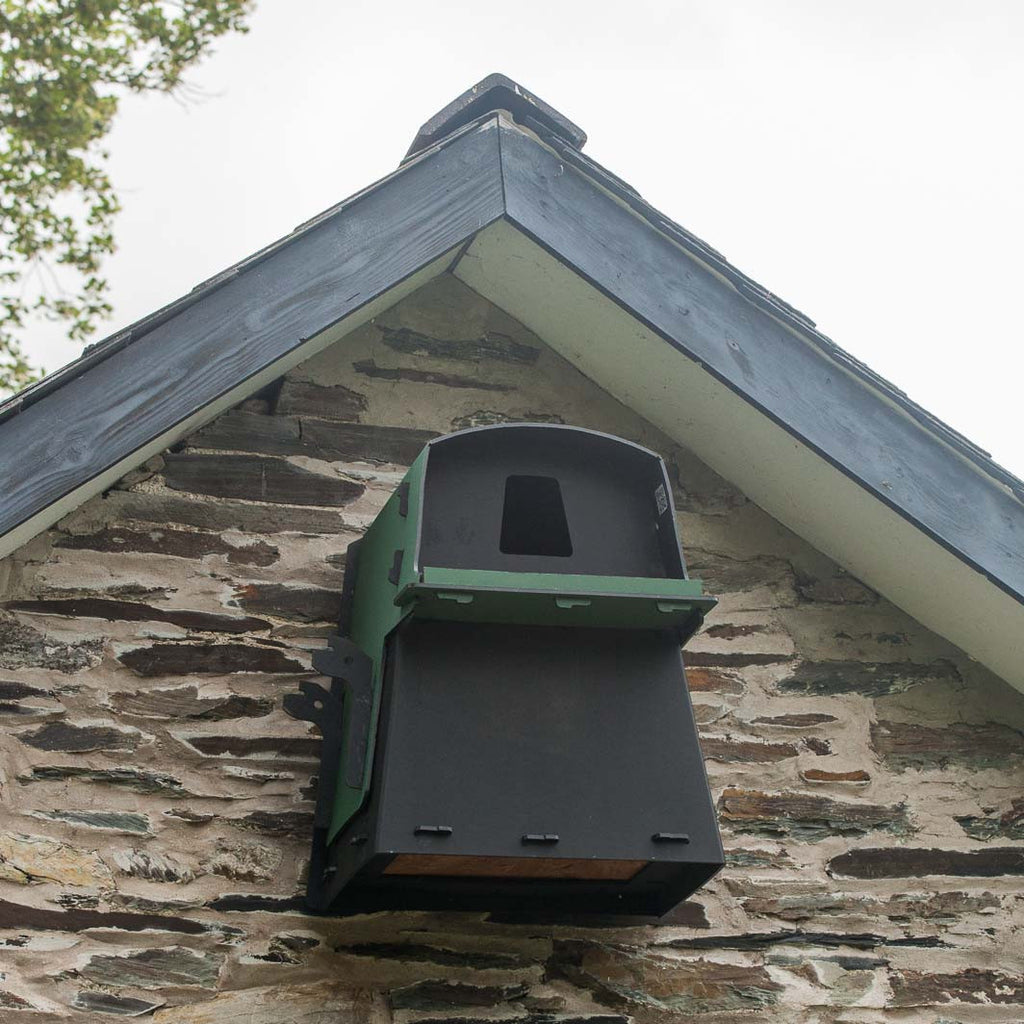 Eco Barn Owl Box on wall