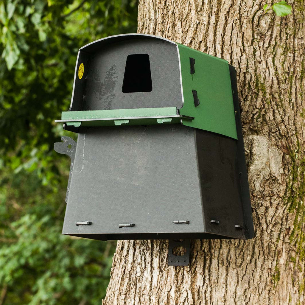 Eco Barn Owl Box on tree