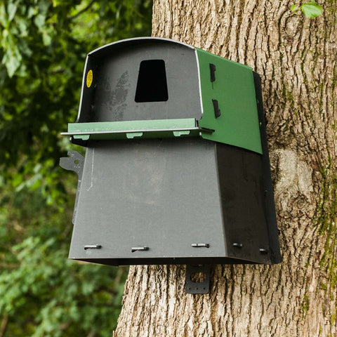 Large Bird Nest Box