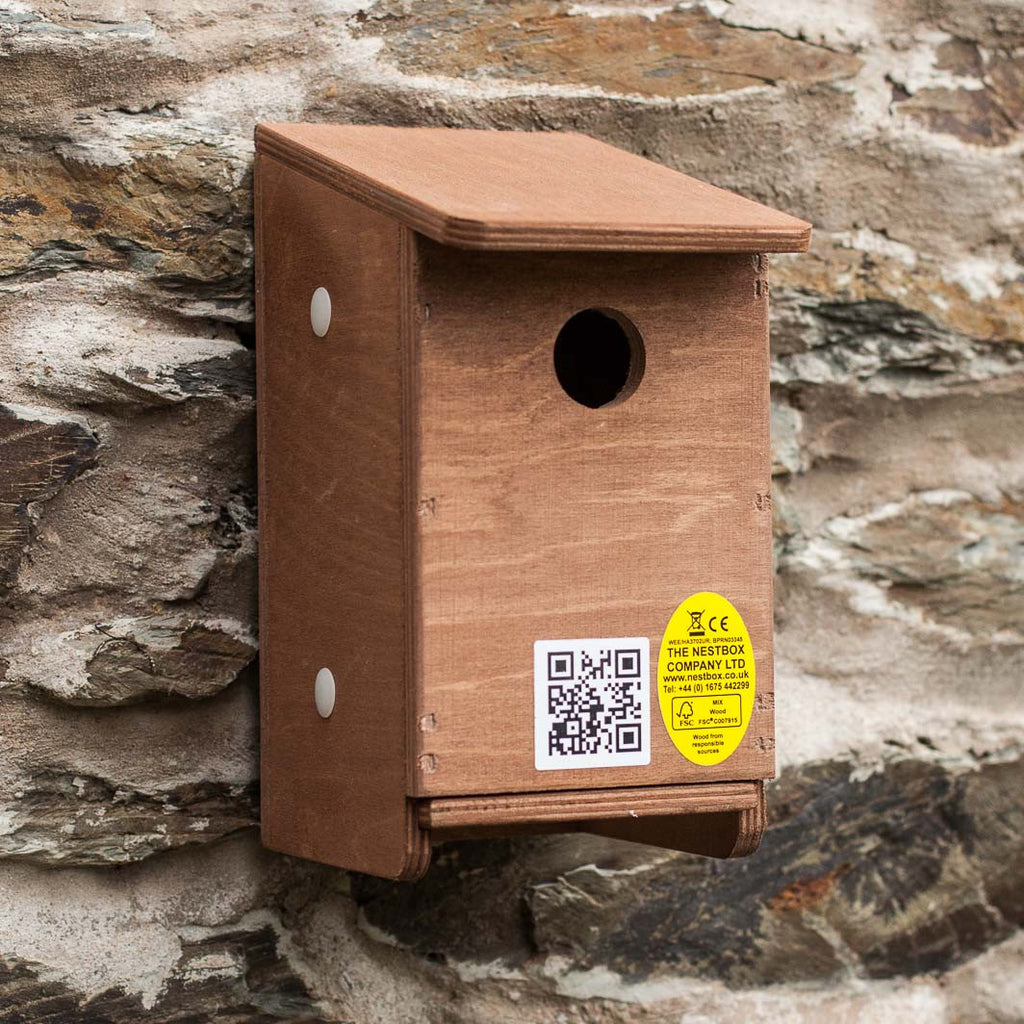 house sparrow nest box on wall