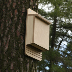 bat box made from do-it-yourself kit
