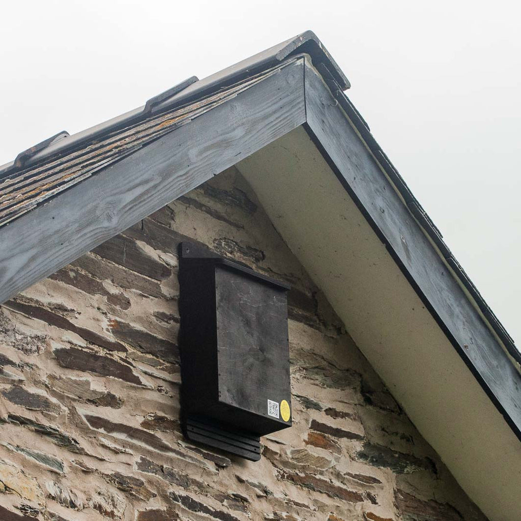 Roost Maternity Bat Box mounted near apex of roof