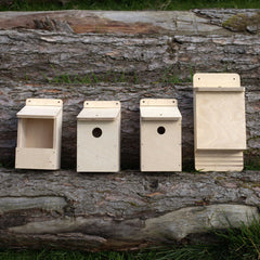 Mixed Bird & Bat Box Kits for group projects