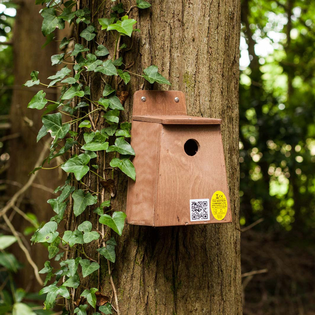 Nesting box for small birds