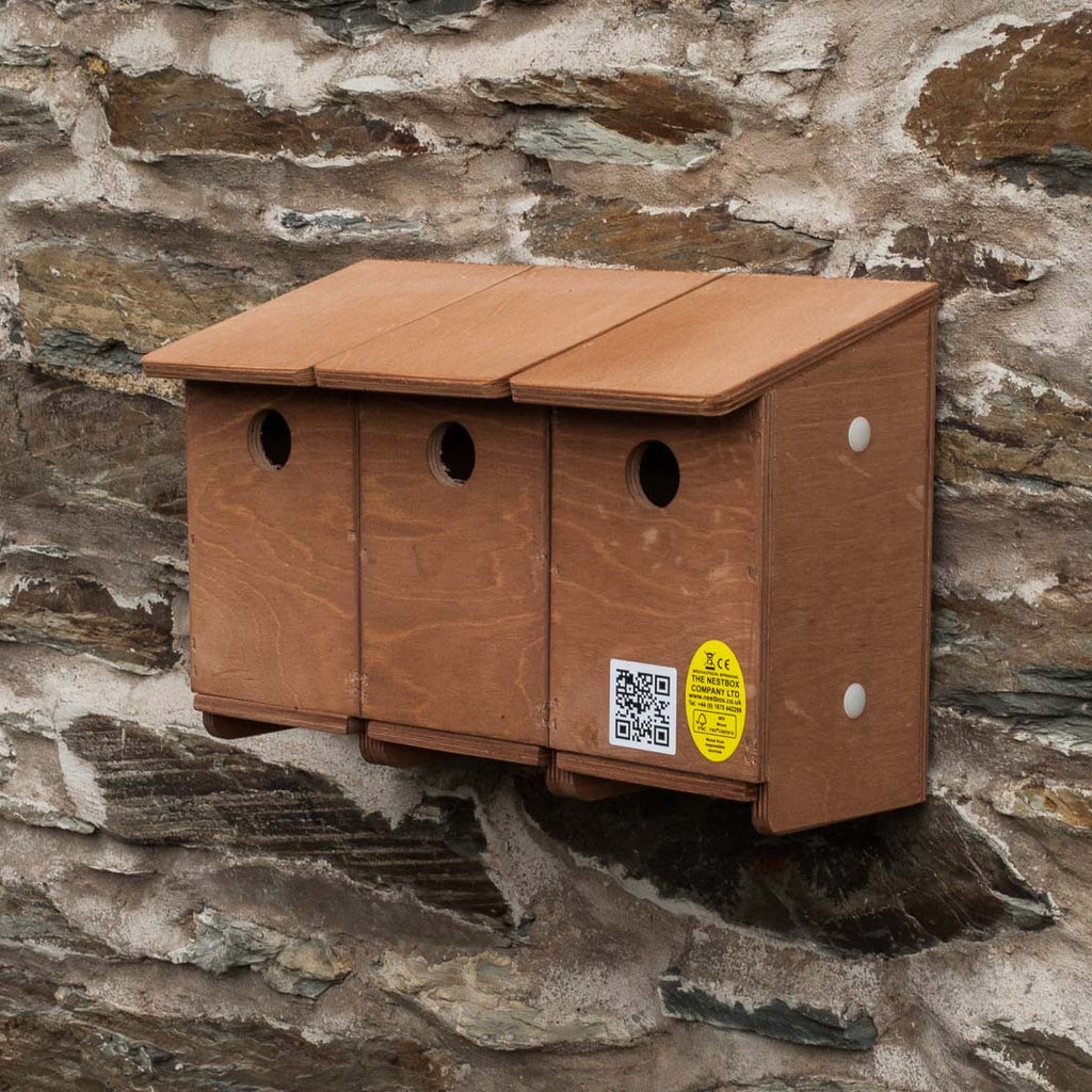 Sparrow terrace nest box can be extended