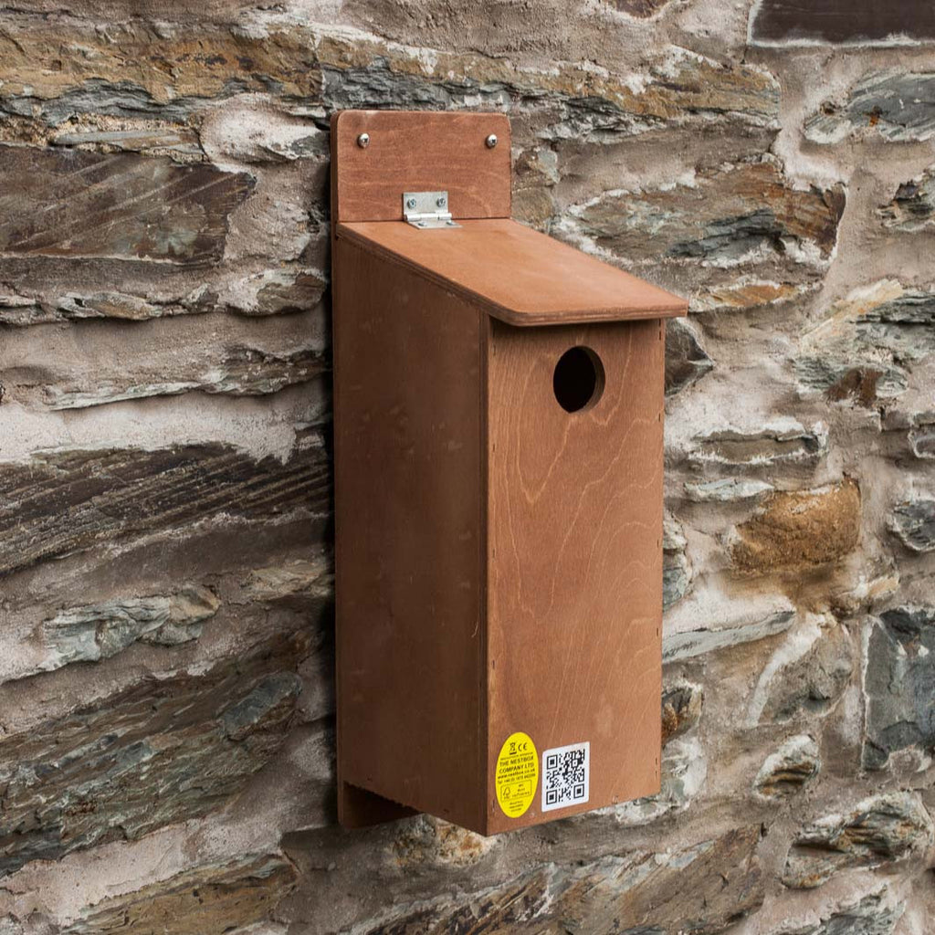 Starling Nest Box on wall