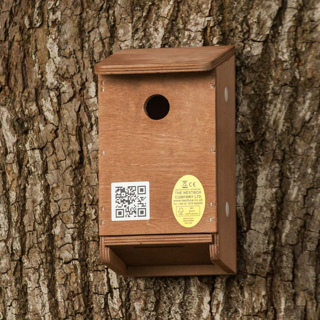 tree sparrow nesting box showing slide-out floor