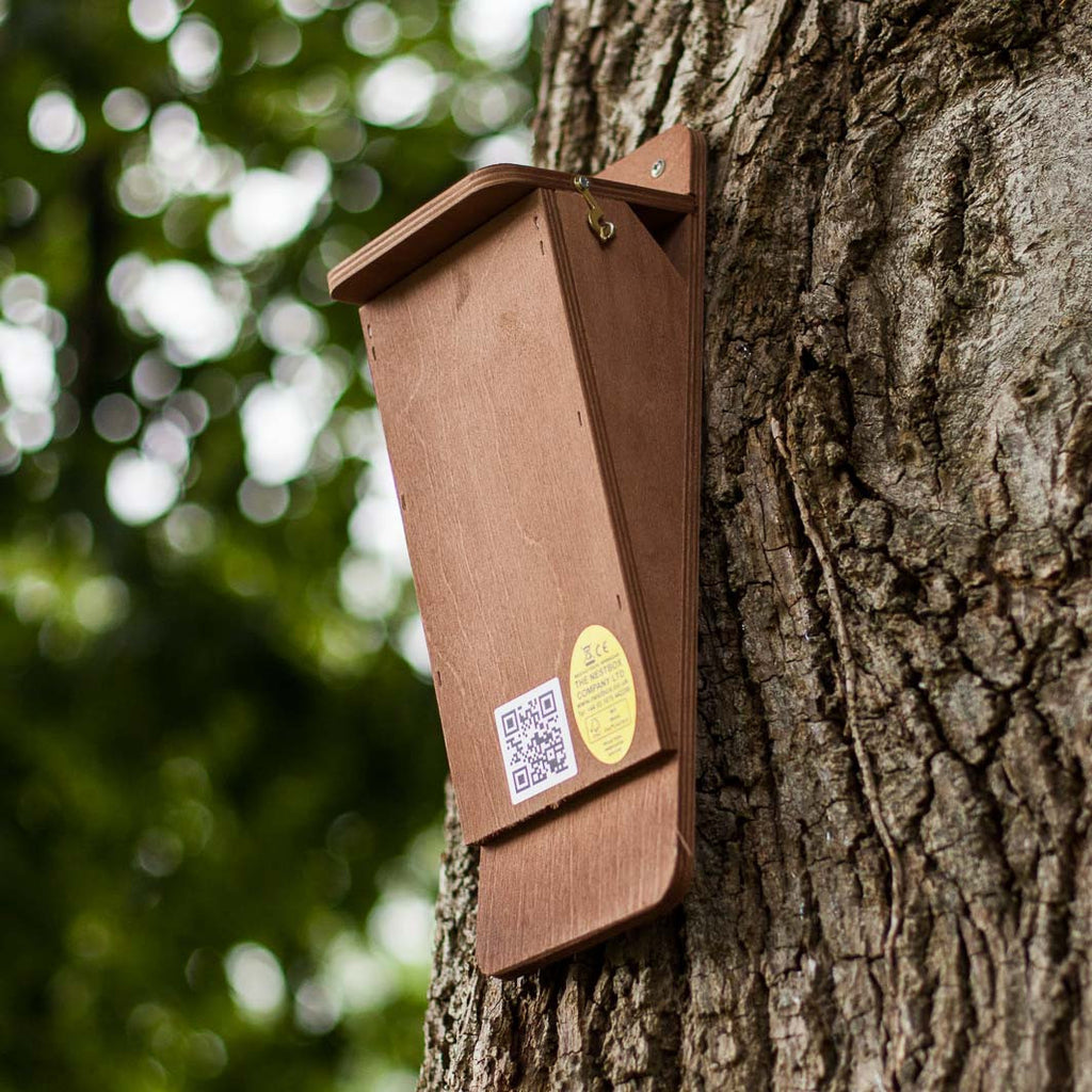 Treecreeper Nest Box The Nestbox Company