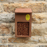 Wall mounted Bird Feeder with nuts
