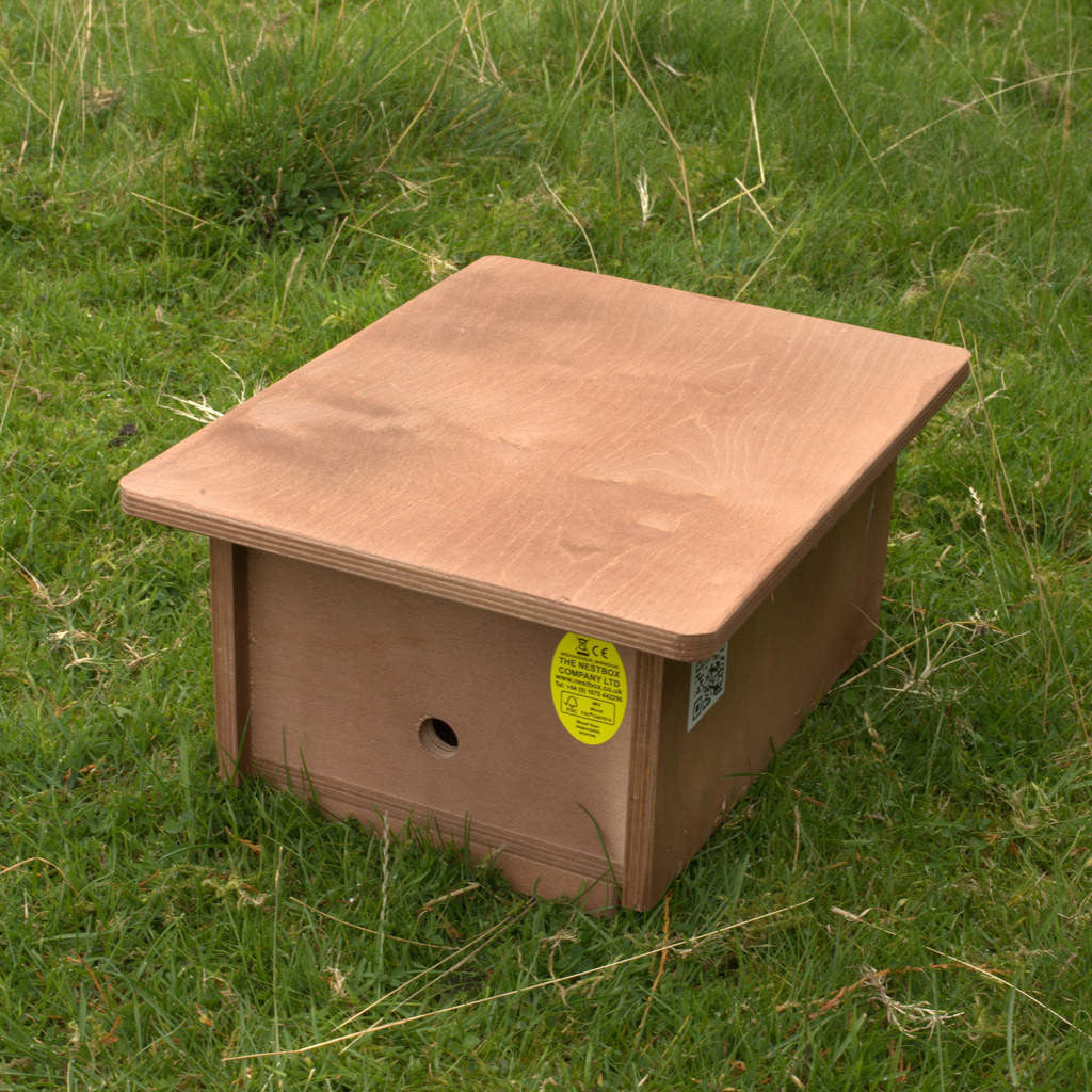 Bumblebee box with 2 internal compartments