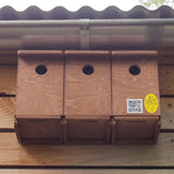 sparrow parade nest box