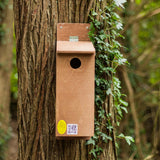 Starling Nest Box on tree