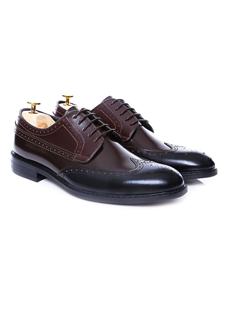 Tri-Tone Derby Brogue Wingtip Lace Up - Dark Brown Solid Leather