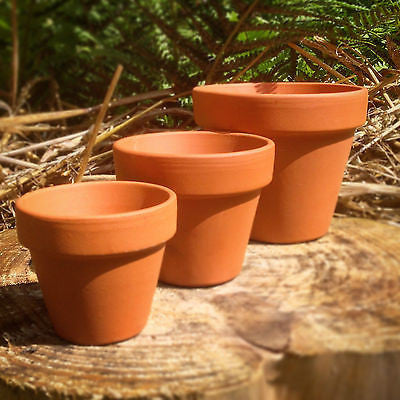 Mini Terracotta Pots 1 - 50 pcs - Extra Small, Small, Medium, Large & Extra Large Plant Pots