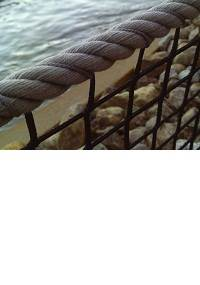 Twisted Rope Border (F6)