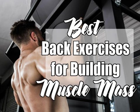 back exercises for building muscle mass