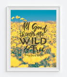 All Good Things are Wild and Free - Henry David Thoreau Quote Photography Print