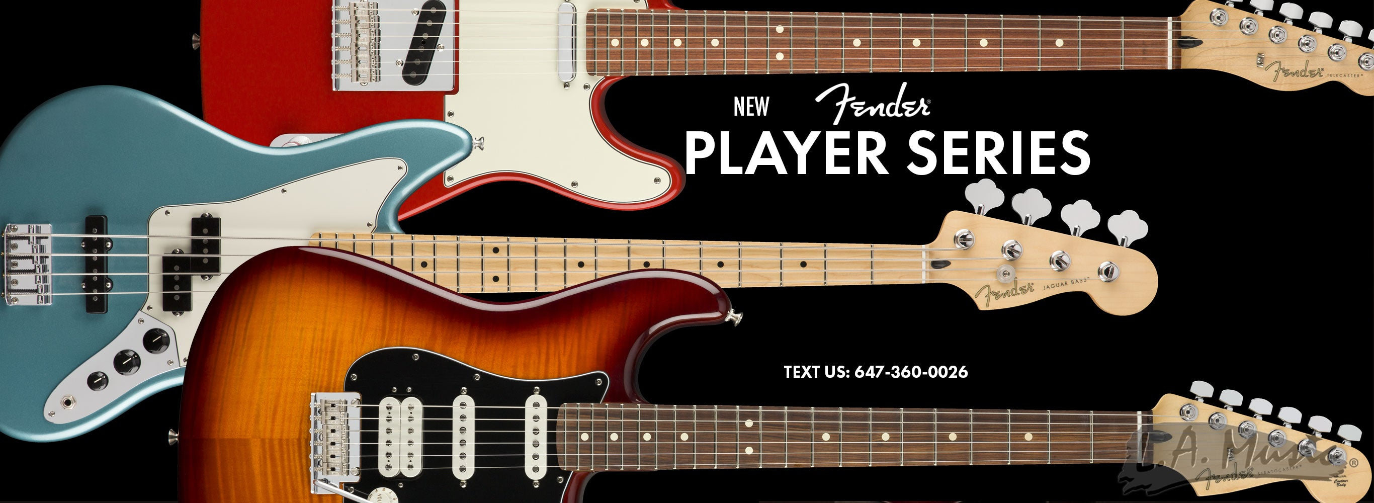 New Fender Player Series