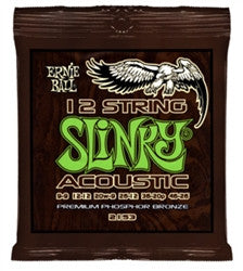 Ernie Ball Acoustic 12-String Light EBP02153 - L.A. Music - Canada's Favourite Music Store!