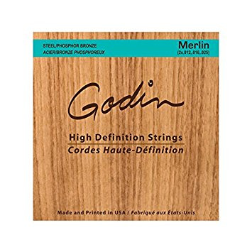 Seagull Merlin High-Definition Strings Steel/Phosphor Bronze Strings For Merlin 039920