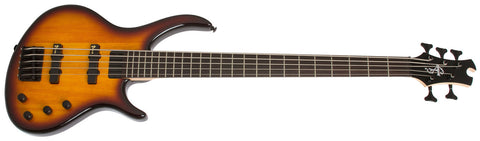 Epiphone Toby Deluxe V 5 String Bass Vintage Sunburst TBD5VSBH - L.A. Music - Canada's Favourite Music Store!