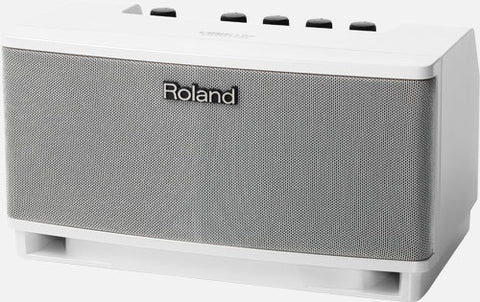 Roland Cube Lite Monitor Amplifier