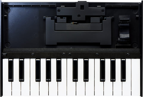 Roland K-25M Portable Keyboard Unit