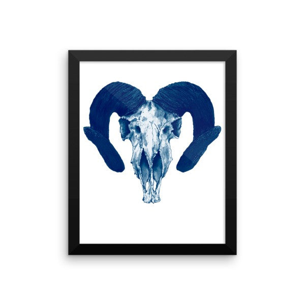 Ram Skull Concave Turned Horns Blue Ink Framed Poster by Robert Bowen - Robert Bowen Tees