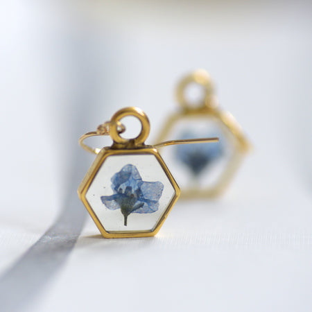 Forget Me Not Honeycomb Earrings