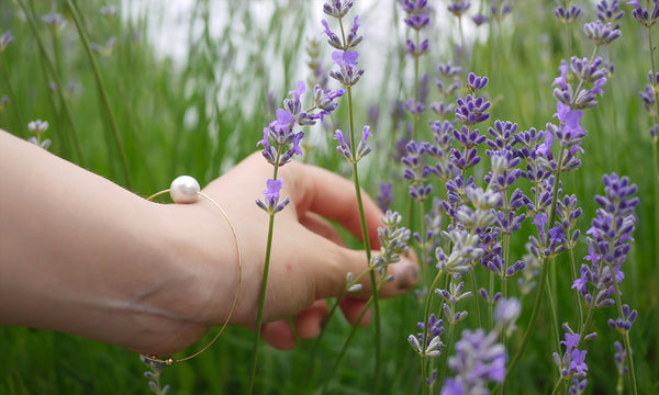 The Addiction of Lavender