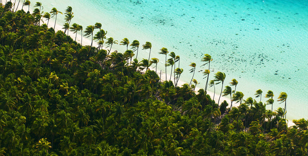 Tetiaroa: Marlon Brando's Sustainable Paradise
