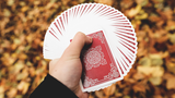 Oriental - Playing Cards and Magic Tricks - 52Kards