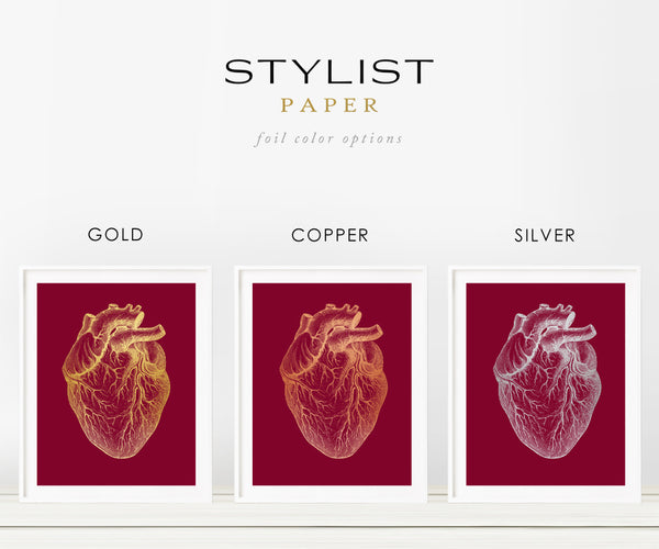 Heart Anatomy Medical Real Gold Foil Art Print