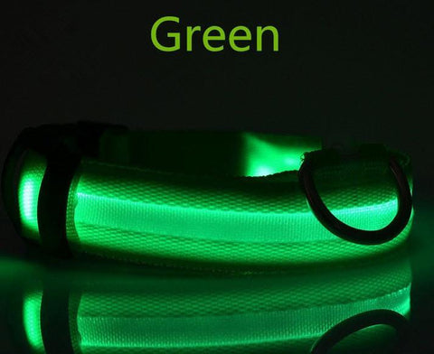 Glow in the Dark Nylon Dog Collar - topnotchloot  - 4