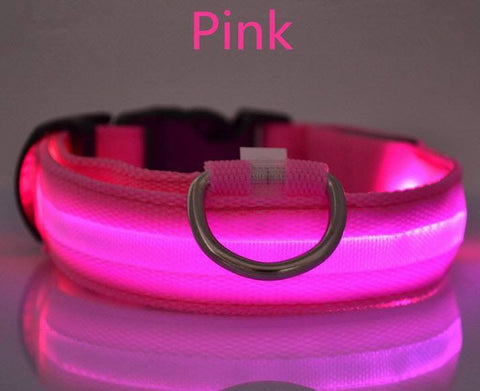 Glow in the Dark Nylon Dog Collar - topnotchloot  - 5