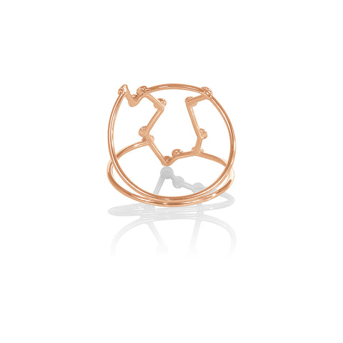 Aquarius Constellation Ring