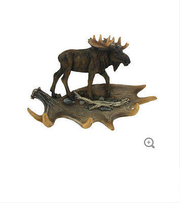 Moose on Antler Hook
