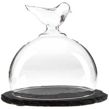 Clear Bird Dome with Slate Base