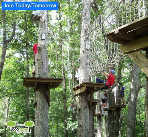 Loco Ropes Treetop Adventure - Today & Tomorrow