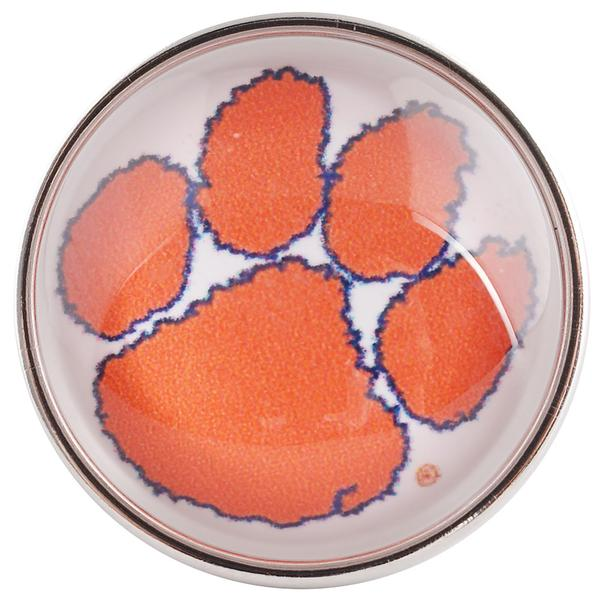 College Football - Clemson Tigers