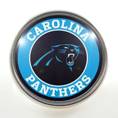 Football - NFL - Carolina Panthers