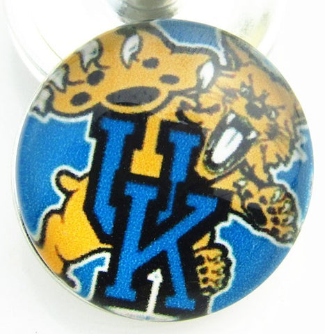 College Football - Kentucky Wildcats