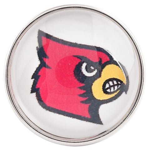 College Football - Louisville Cardinals