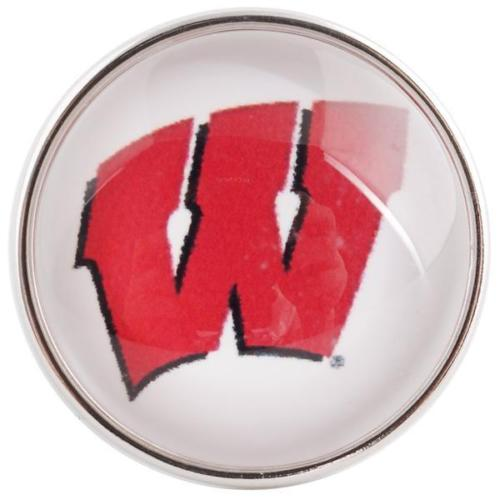 College Football - Washington Badgers