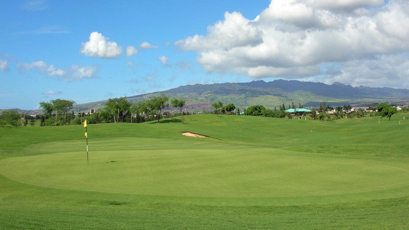 Coral Creek Golf course view of green and mountain