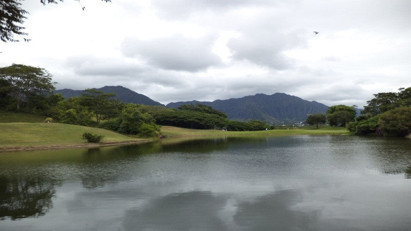 Bayview Golf Hawaii Tee Times lake