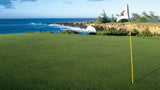 Kapalua Bay 5th green with water only steps away
