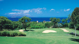 Wailea Old Blue Fairway Views